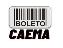 Loja virtual Caema – 2a Via Conta de Água